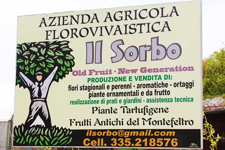 vivaio-il-sorbo-frutti-antichi-pesaro-urbino-