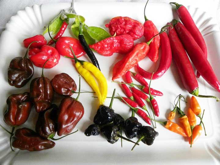 Mix peperoncini piccanti